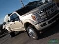 Ford F450 Super Duty Platinum Crew Cab 4x4 White Gold photo #36
