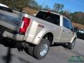 Ford F450 Super Duty Platinum Crew Cab 4x4 White Gold photo #37