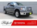 Ford F150 XLT SuperCrew Sterling Gray Metallic photo #1