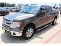 Ford F150 XLT SuperCrew Sterling Gray Metallic photo #3
