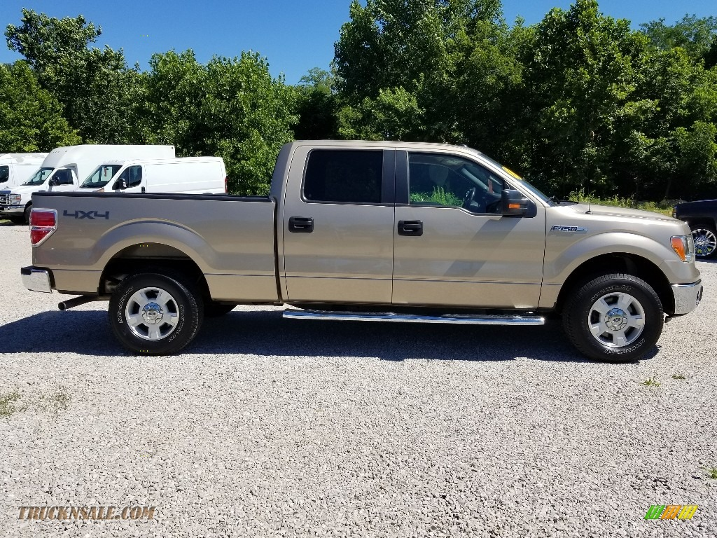 2013 F150 XLT SuperCrew 4x4 - Pale Adobe Metallic / Adobe photo #2