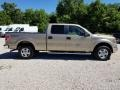 Ford F150 XLT SuperCrew 4x4 Pale Adobe Metallic photo #2