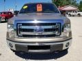 Ford F150 XLT SuperCrew 4x4 Pale Adobe Metallic photo #3