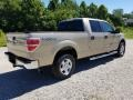 Ford F150 XLT SuperCrew 4x4 Pale Adobe Metallic photo #6