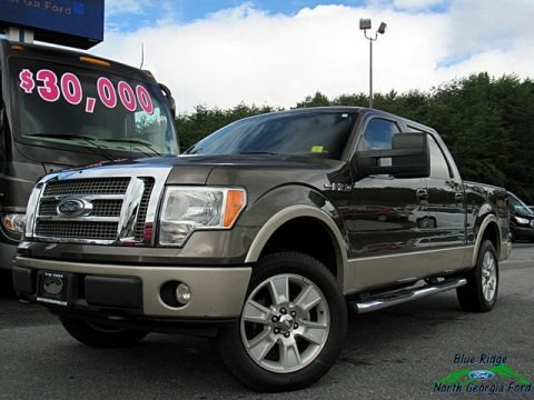 Stone Green Metallic 2009 Ford F150 Lariat SuperCrew 4x4