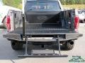 Ford F150 SVT Raptor SuperCrew 4x4 Lead Foot photo #11