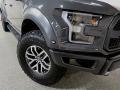 Ford F150 SVT Raptor SuperCrew 4x4 Lead Foot photo #10
