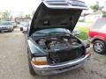 Dodge Dakota SLT Extended Cab Forest Green Pearl photo #5