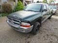 Dodge Dakota SLT Extended Cab Forest Green Pearl photo #7