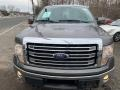 Ford F150 Lariat SuperCrew 4x4 Sterling Gray Metallic photo #7