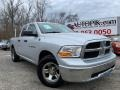 Dodge Ram 1500 ST Quad Cab Bright Silver Metallic photo #1