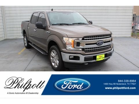 Stone Gray 2019 Ford F150 XLT SuperCrew 4x4