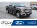 Ford F150 XLT SuperCrew 4x4 Magnetic photo #1