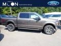 Ford F150 XLT SuperCrew 4x4 Stone Gray photo #1