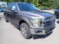Ford F150 XLT SuperCrew 4x4 Stone Gray photo #3