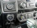 Ford F150 XLT SuperCrew 4x4 Magnetic photo #23
