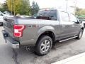 Ford F150 XLT SuperCrew 4x4 Magnetic photo #5