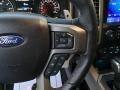Ford F150 SVT Raptor SuperCrew 4x4 Rapid Red photo #20
