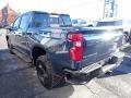 Chevrolet Silverado 1500 LT Trail Boss Crew Cab 4x4 Northsky Blue Metallic photo #5
