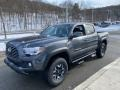 Toyota Tacoma TRD Off Road Double Cab 4x4 Magnetic Gray Metallic photo #12