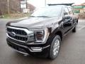 Ford F150 Platinum SuperCrew 4x4 Kodiak Brown photo #4