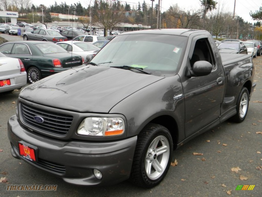 Dark Shadow Grey Metallic / Black/Silver Ford F150 SVT Lightning