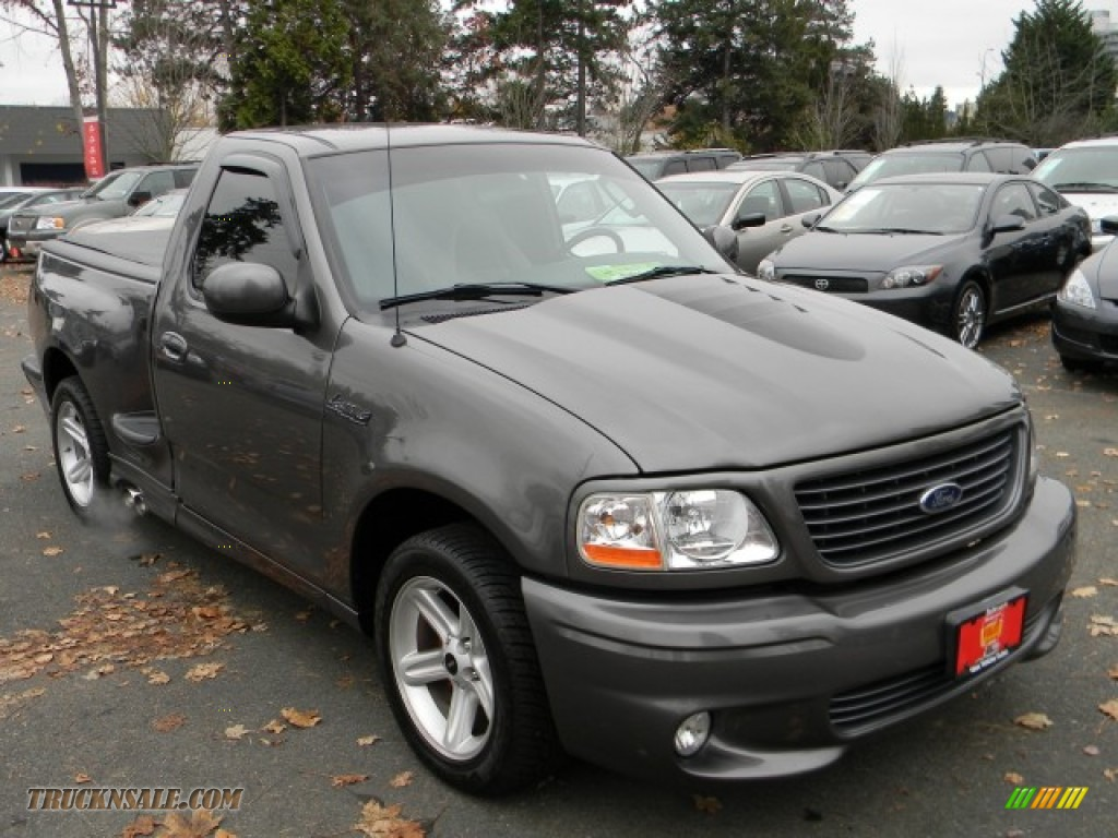 2003 F150 SVT Lightning - Dark Shadow Grey Metallic / Black/Silver photo #2