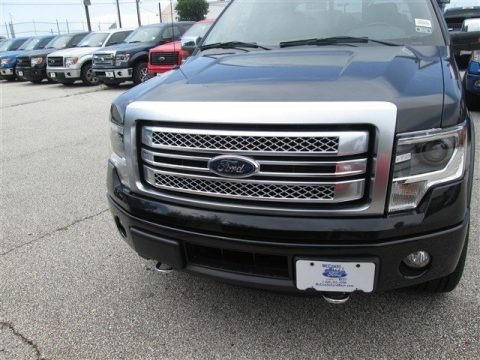 Tuxedo Black 2014 Ford F150 Platinum SuperCrew 4x4