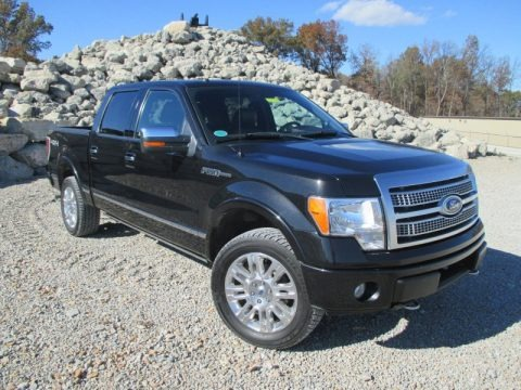 Tuxedo Black 2010 Ford F150 Platinum SuperCrew 4x4